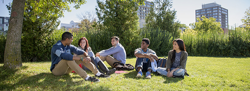 photo of a group of students sitting under a tree